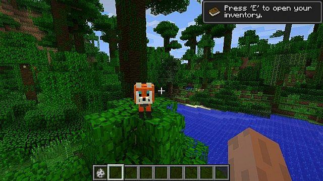 The-fox-mod-1.jpg