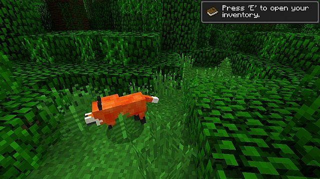 The-fox-mod-3.jpg