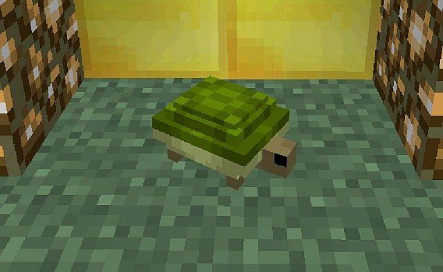 Turtle-mod-1.jpg