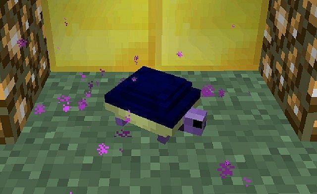 Turtle-mod-3.jpg