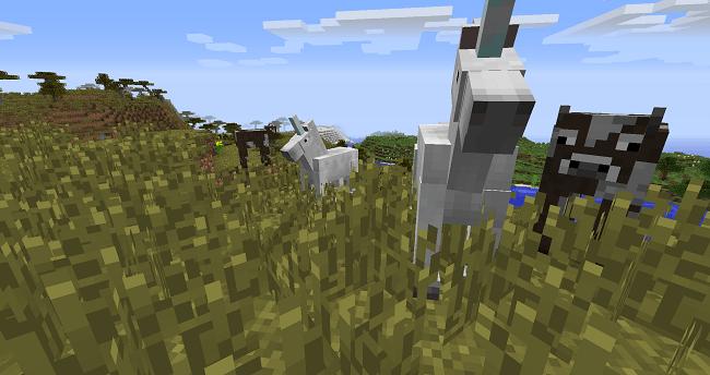Unicorn-Mod-1.jpg