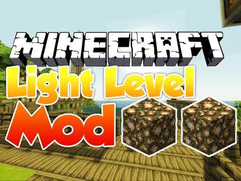 http://img.niceminecraft.net/Mods/Whats_My_Light_Level_mod.jpg