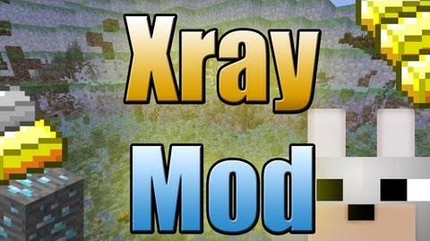 http://img.niceminecraft.net/Mods/Xray-Mod.jpg