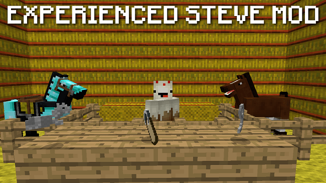 experienced-steve-mod.png