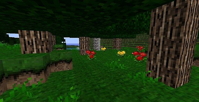 http://img.niceminecraft.net/ResourcePack/Echanium-craft-texture-pack-1.jpg