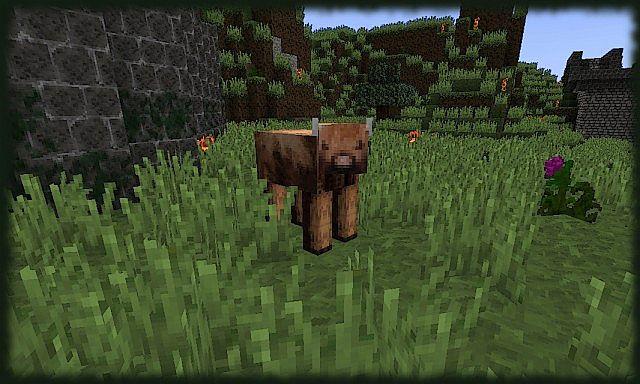 Moray-texture-pack-13.jpg
