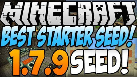 Best-Starter-Seed.jpg