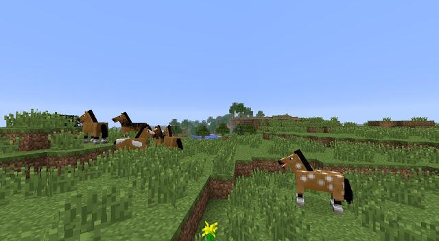 http://img.niceminecraft.net/Seed/Horse-Village-Seed.jpg