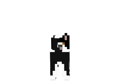 Collie-skin-1.png