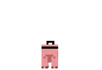 Doctor-pig-skin-1.png