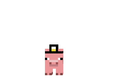 Doctor-pig-skin.png