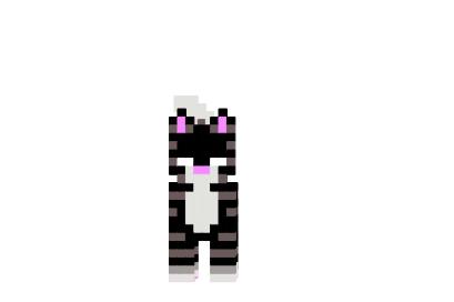 Herobrine-cat-skin.png
