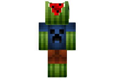 Melon-skin-1.png