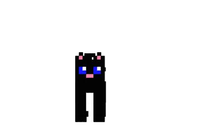 Miau-skin.png