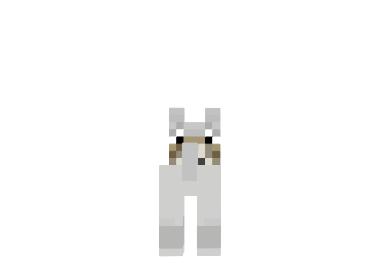 Minecraft-wolf-skin-1.png