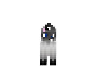 Simese-cat-skin-1.png