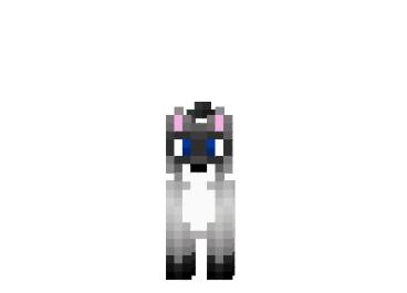 Simese-cat-skin.png