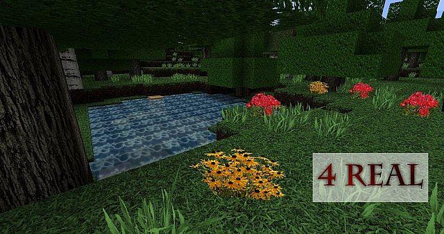 http://img.niceminecraft.net/TexturePack/4-real-texture-pack.jpg
