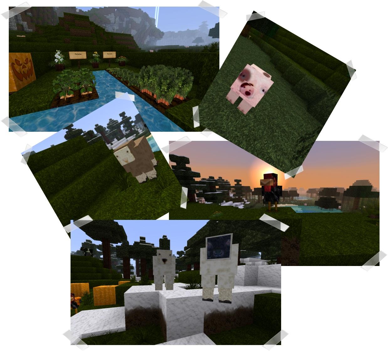 http://img.niceminecraft.net/TexturePack/Faerielight-texture-pack-2.jpg