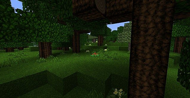 http://img.niceminecraft.net/TexturePack/The-arestians-dawn-rpg-1.jpg
